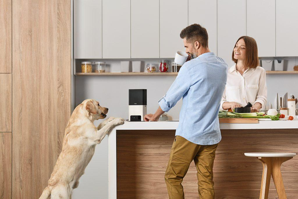 An image showing a dog camera treat dispenser